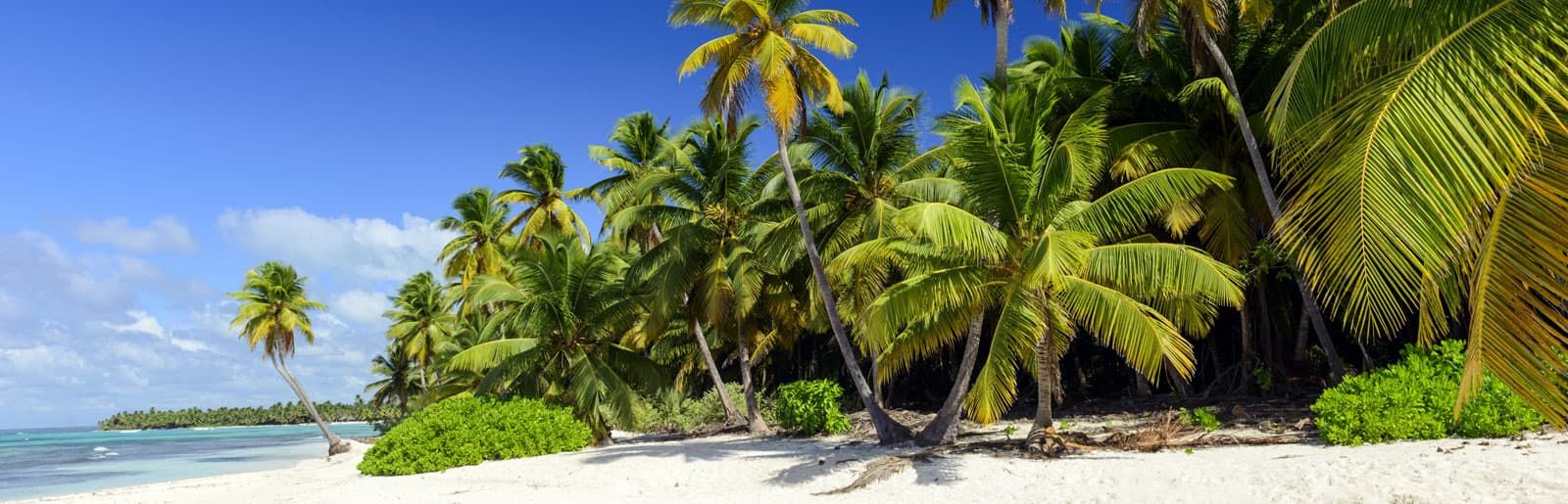 Holidays in Punta Cana